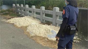 是誰?順澤宮路跑前遭倒酸臭豆腐渣 美魔女鄉長報警要抓凶手