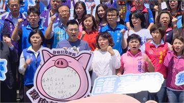 國民黨推動反美豬公投 串連黨籍縣市長「地方包圍中央」