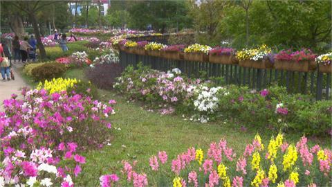 春暖花開!  台北杜鵑花季3月14日登場