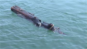 基隆「環保艦隊」成軍!增設暫置區回收海漂垃圾