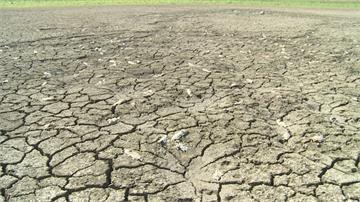 罕見無颱風登陸、降雨量少!「56年最慘現況」找水、節水總動員
