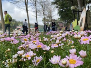 新春假期瘋玩西湖渡假村!12歲以下兒童免費入園
