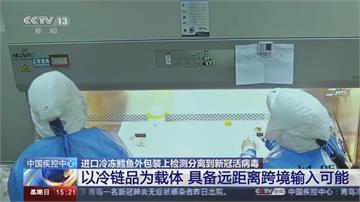 快新聞/青島冷凍鱈魚驗出活病毒 青島找到新證據:病毒可由物傳人且冷凍下可長期存活