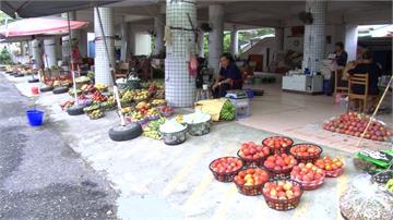 台南左鎮芒果正值盛產 市場人潮冷清老農無奈