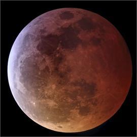 用肉眼就看的到!「超級血月」這天登場 NASA曝最佳賞月地點