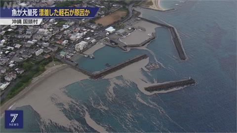 誤吞海底火山浮石.... 沖繩逾200條養殖魚暴斃
