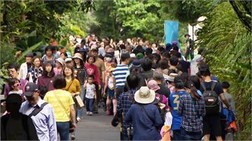 親子連假出遊 北市動物園、貓纜擠滿人潮
