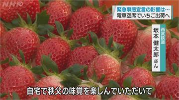 日本果園拚業績 推線上採草莓疫情中小確幸!坐等草莓宅配到府