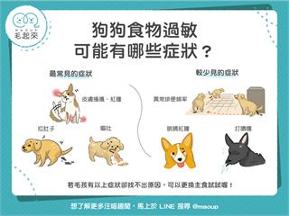 【汪汪康健】狗狗食物過敏,可能有哪些症狀?