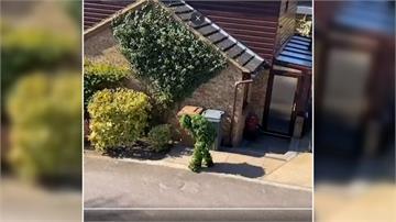 「灌木叢、垃圾袋」趴趴走 英國人怪招百出只為溜出門透氣