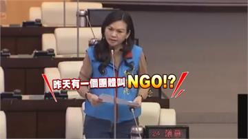 「有個團體叫NGO」 國民黨市議員鬧笑話
