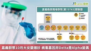 嘉義群聚10月大女嬰確診 病毒基因非Delta是Alpha變異