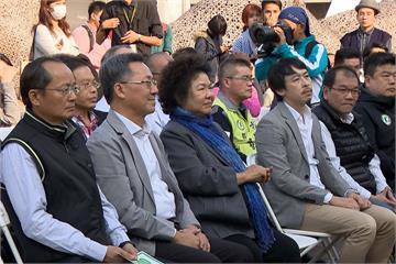 花媽心內話引爆政壇 陳菊:交情敵不過現實
