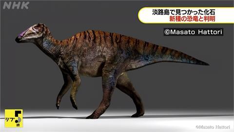 兵庫出土新恐龍化石 取名「伊奘諾的日本龍」