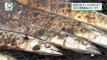 秋刀魚減少怪台灣、中國?日本提案限制捕撈
