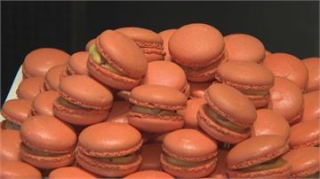 25種秋蟹吃到飽 蟹肉馬卡龍漢堡也上桌