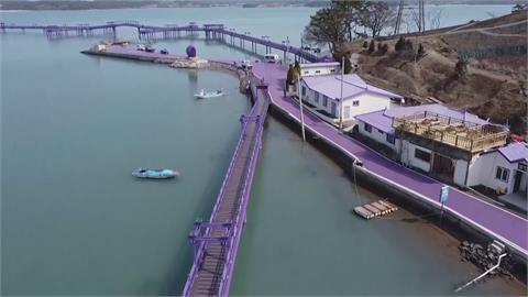 疫情下的網美天堂! 南韓新景點「紫色小島」夢幻如童話