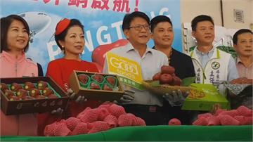 安撫果農不安的心!潘孟安:每週400公斤蓮霧銷香港