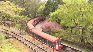 驚! 阿里山森鐵「道釘鬆脫」 台鐵:已修復