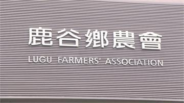 鹿谷鄉農會遭爆加班費用人民幣付!農會:中國買茶用人民幣付 方便入帳