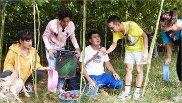 《綜藝新時代》浩子幫「百香果生小孩」!搞笑說原來生小孩是可以幫忙的!