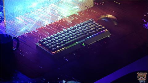 3C/Razers 全新大小僅全尺寸鍵盤的 65%的 BlackWidow V3 Mini HyperSpeed 無線鍵盤