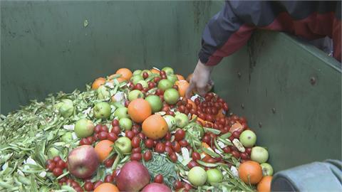 噁! 老婦撿垃圾堆爛果 送水果攤變賣、送街友