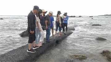 緩衝期已到! 富山護魚區禁遊客餵魚「最高罰15萬」漁會將派專人餵魚促觀光