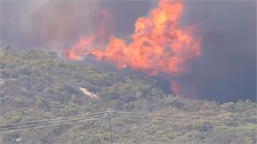 洛杉磯聖牙辛托山脈被縱火  演變為森林大火