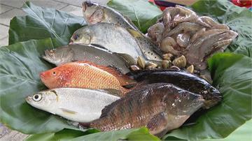 年年有「魚」過好年 網購新鮮漁產「方便又澎湃」
