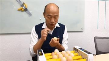 韓國瑜「孵蛋秀」小雞遭丟棄?發言人直播搬家要大家安心