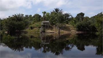 住雨林也躲不過!傳亞馬遜15歲少年罹武漢肺炎死亡