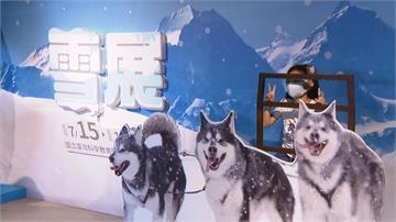 體驗冰天雪地!「雪展」末日擠爆 一項設施排逾1小時