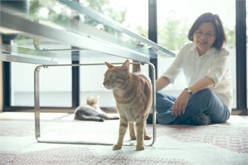 快新聞/攜手網紅拍公益桌曆援助動物夥伴 蔡英文暖喊:用愛療癒每一天