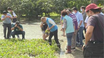 快新聞/不去公辦說明會選擇「拚農業」 韓國瑜戴墨鏡穿雨鞋視察災情