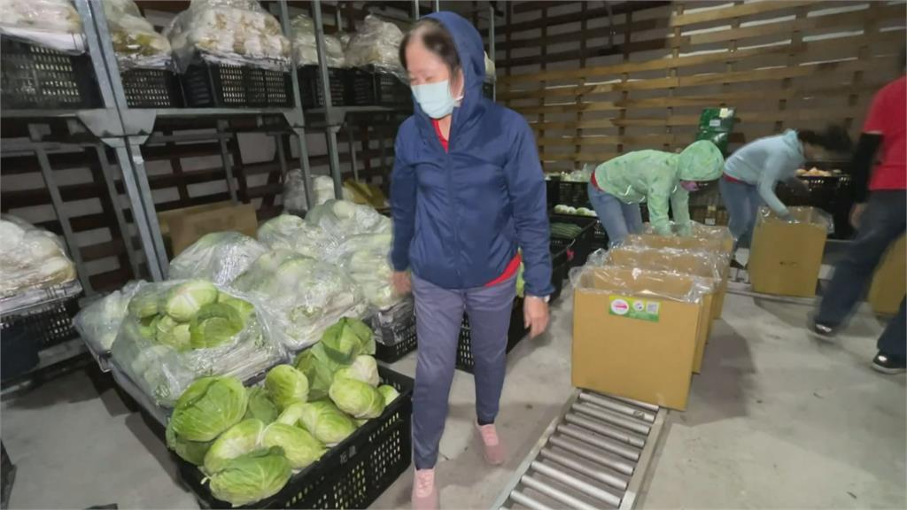 花蓮「蔬菜箱」好貼心 可依家中人數選購大小箱