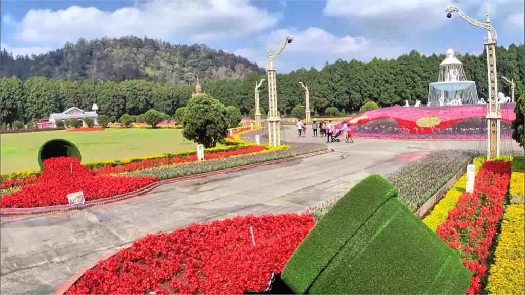 濃濃歐風! 遊樂園打造全台最大薰衣草園