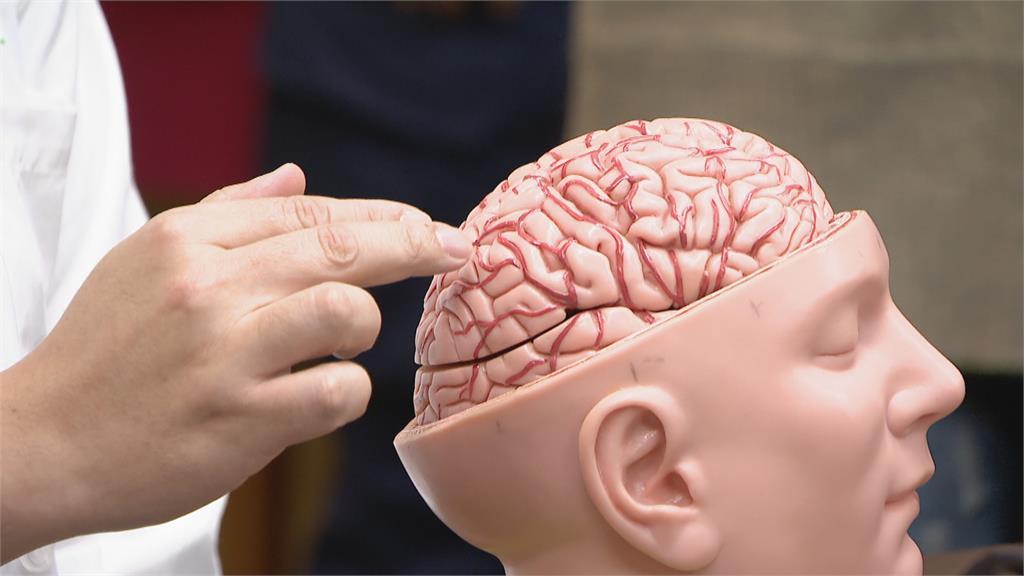 台灣人特有! 北榮發現「腦中風突變基因」發病風險高出11倍 有家族史更危險
