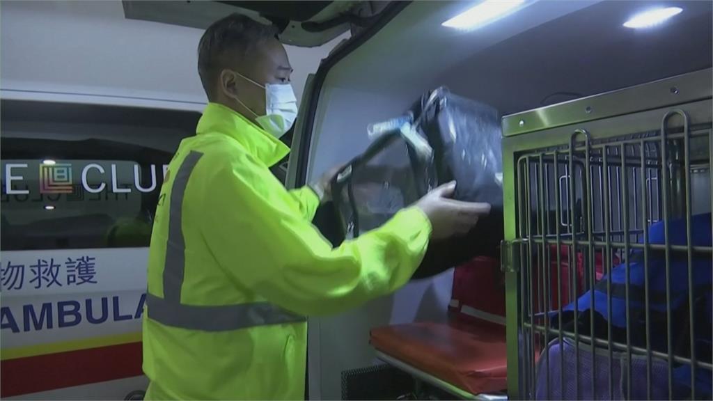 專屬寵物救護車 氧氣、擔架、急救配備齊全