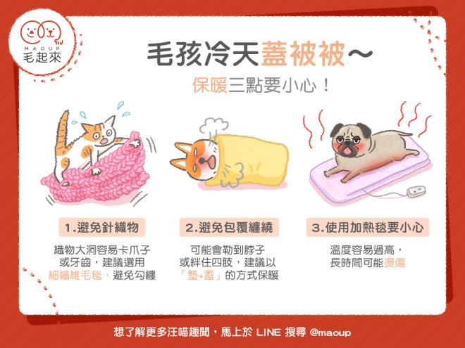 【狗貓家居】毛孩天冷蓋被被~小心勾到、纏到、燙到!保暖三點要小心!|寵物愛很大