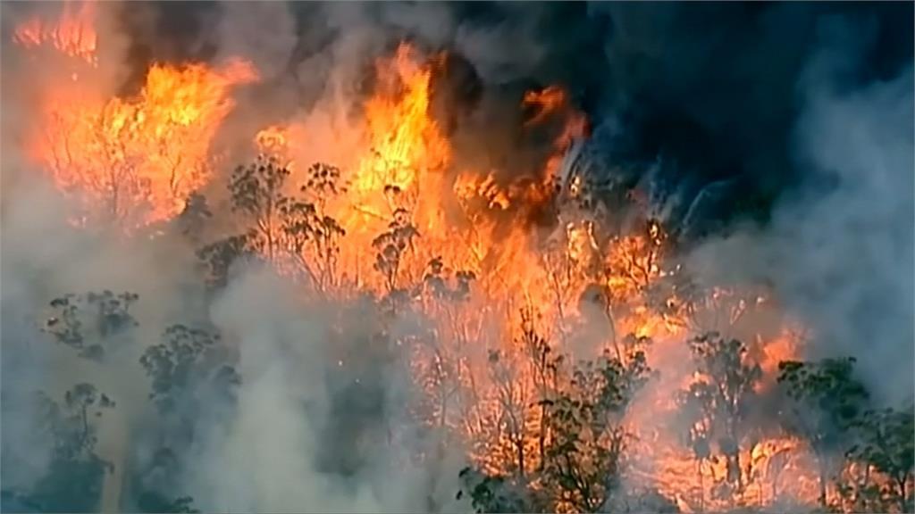 澳洲雷擊引森林大火 強風助長火勢持續延燒