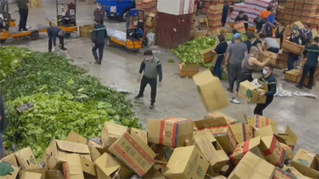 天氣回暖菜量倍增 產地批發價低 !大量蔬菜棄拍銷毀 菜賤傷農引關注