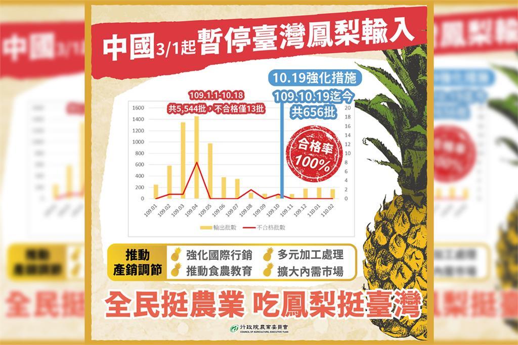 快新聞/鳳梨即將豐收遭中國禁止進口 陳吉仲:去年10/19至今「合格率100%」