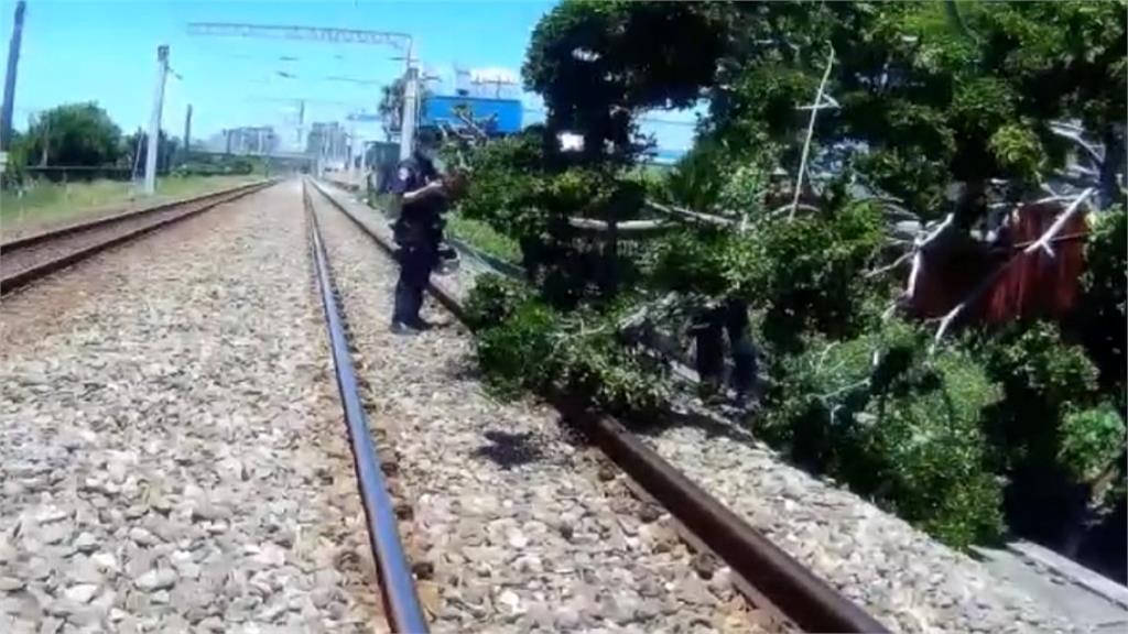 嚇冷汗!強風吹大樹倒鐵軌 列車驚險剎停