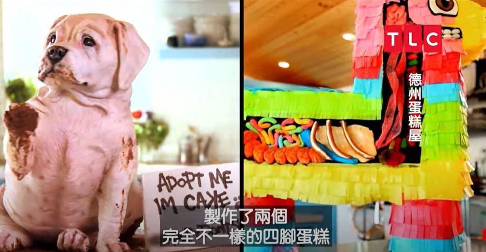宅家動手做甜點 看達人打造彩紙驢子蛋糕