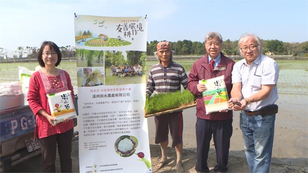 有機肥是秘密武器!彰化溪州契作五甲「超越日本」的越光米