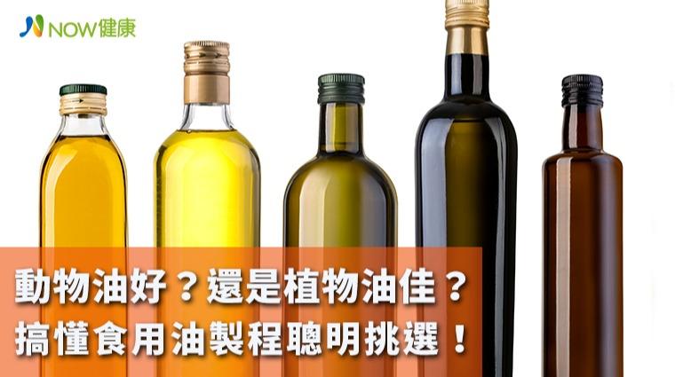 動物油好?還是植物油佳? 搞懂食用油製程聰明挑選!