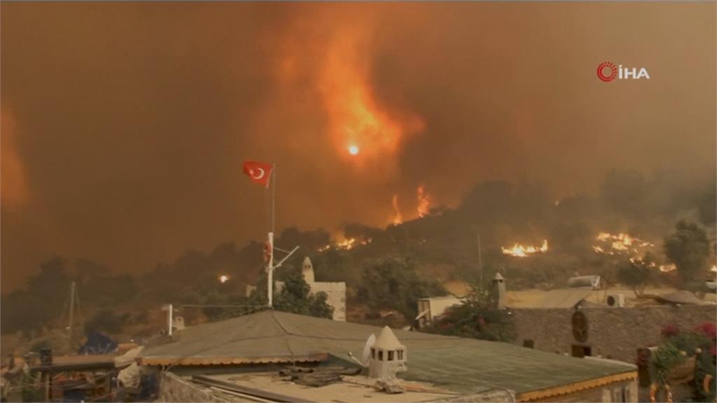 土耳其大規模野火不斷 總統艾杜恩:若人為縱火將嚴懲