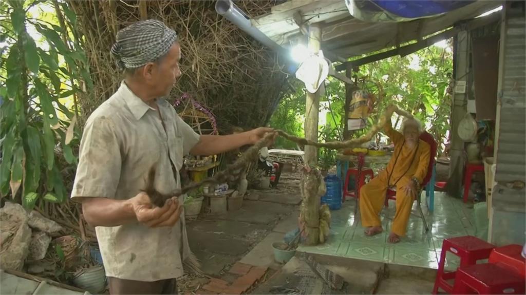 長髮「阿公」!70年未剪!越南92歲翁髮長5公尺