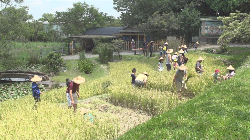 傳統農場注入管理與行銷專業 轉型休閒農場